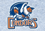 Condors Ticket Call-In Contest Rules